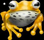 Yellow Frog_Jungle Land slot